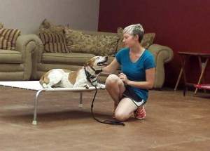 Heather Hamilton Project K9 at K9 Lifeline working with Ginger